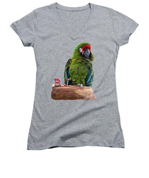 B. J., The Military Macaw Women's V-Neck T-Shirt (Junior Cut) by Zazu's House Parrot Sanctuary