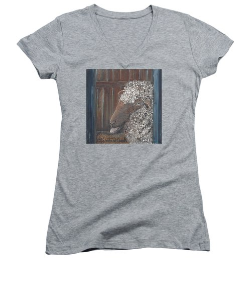 Baa Women's V-Neck T-Shirt