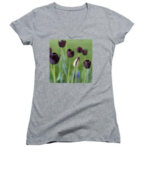 Baby Bloomer Women's V-Neck T-Shirt (Junior Cut) by Linda Mishler