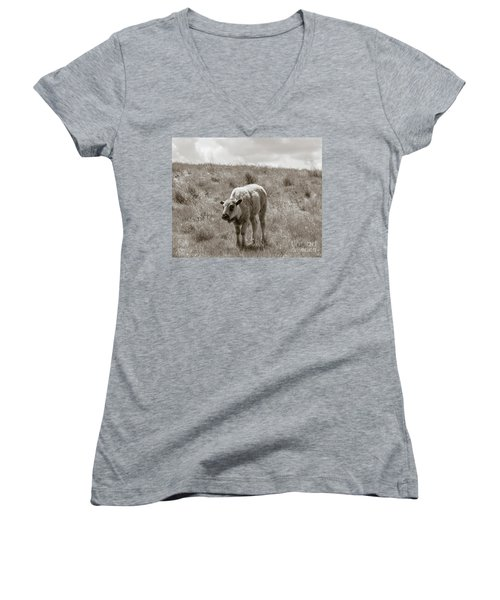 Women's V-Neck T-Shirt (Junior Cut) featuring the photograph Baby Buffalo In Field With Sky by Rebecca Margraf