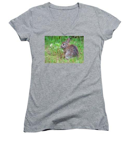 Baby Bunny Women's V-Neck