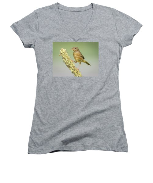 Baby Common Yellow Throat Warbler Women's V-Neck (Athletic Fit)