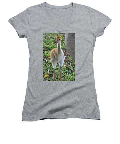 Baby Crane At A Month Old Women's V-Neck (Athletic Fit)