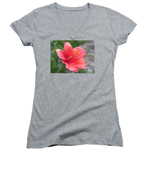 Women's V-Neck featuring the photograph Baby Grasshopper On Hibiscus Flower by Nancy Nale