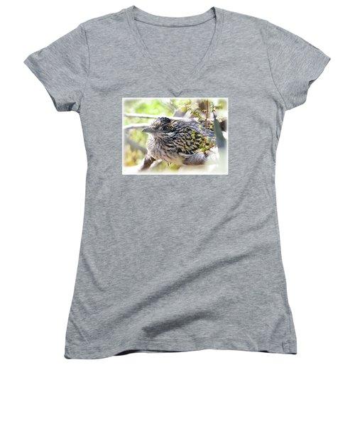 Baby Roadrunner  Women's V-Neck T-Shirt