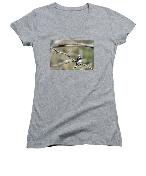 Backyard Blue Jay Women's V-Neck T-Shirt