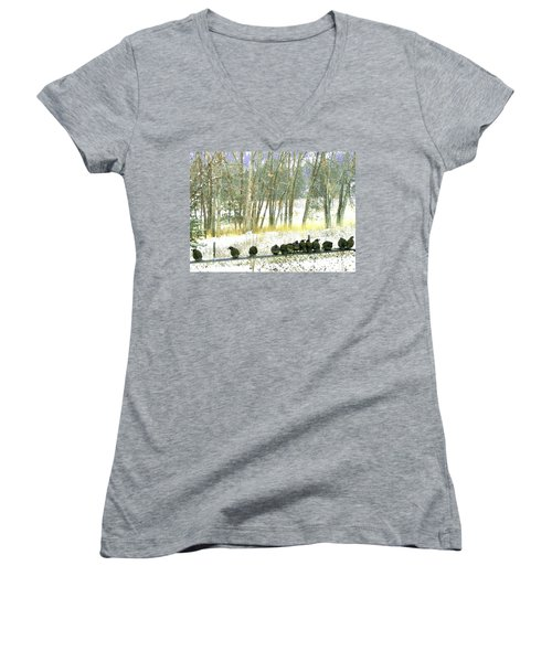 Bakers Dozen Women's V-Neck