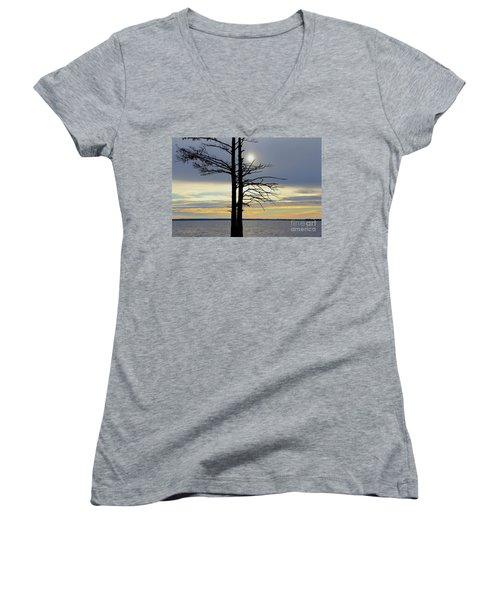 Bald Cypress Silhouette Women's V-Neck (Athletic Fit)