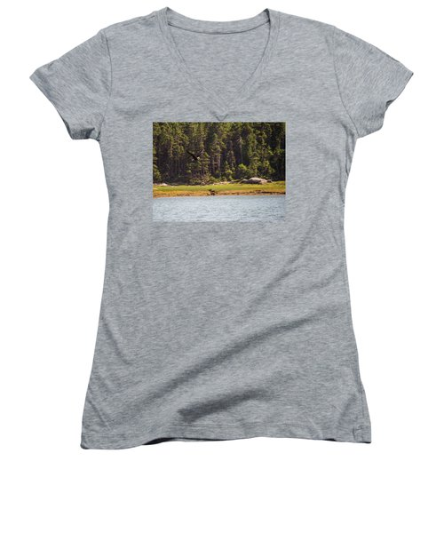 Bald Eagle In Flight Women's V-Neck T-Shirt (Junior Cut) by Trace Kittrell
