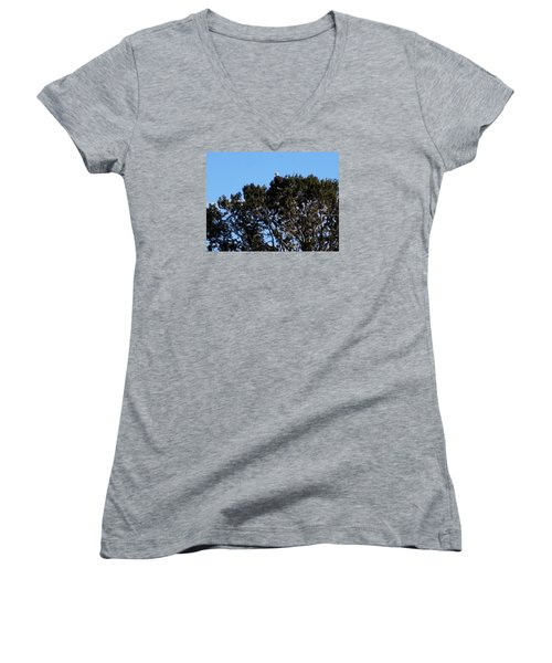 Women's V-Neck T-Shirt (Junior Cut) featuring the photograph Bald Eagle In Juniper by Deborah Moen
