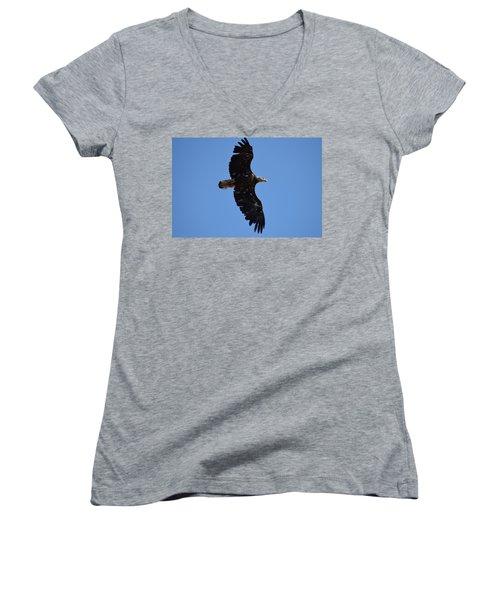 Bald Eagle Juvenile Soaring Women's V-Neck