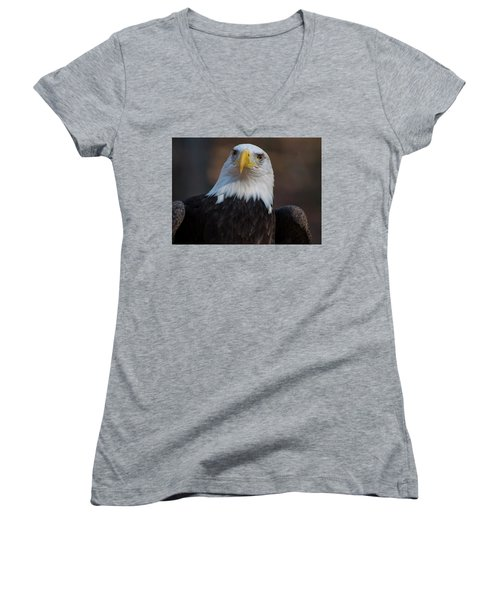 Bald Eagle Looking Right Women's V-Neck