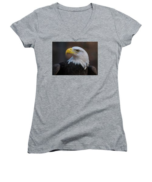 Bald Eagle Painting Women's V-Neck T-Shirt (Junior Cut) by Chris Flees