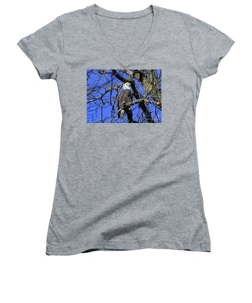 Bald Eagle Women's V-Neck T-Shirt (Junior Cut) by Paula Guttilla