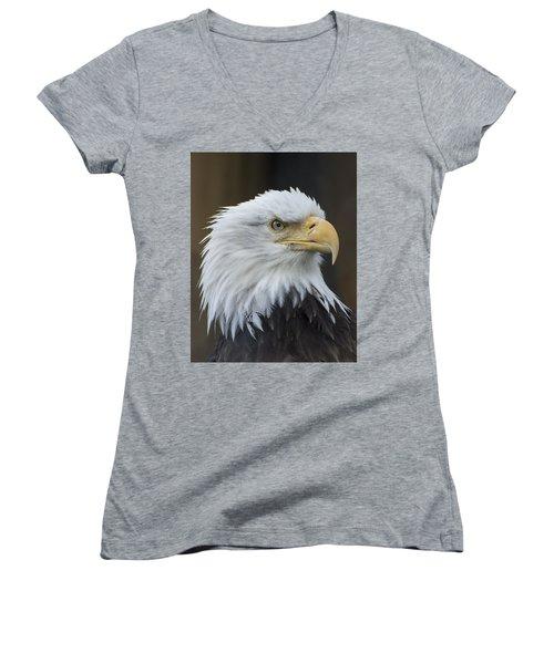 Bald Eagle Portrait Women's V-Neck