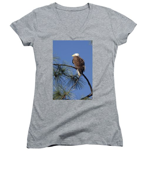 Women's V-Neck T-Shirt (Junior Cut) featuring the photograph Bald Eagle by Sally Weigand