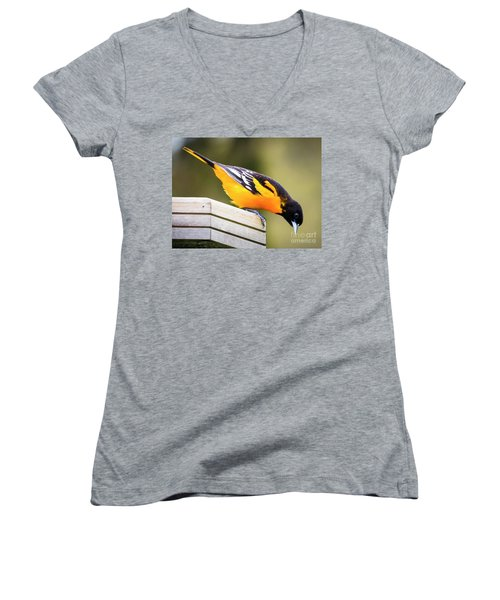 Women's V-Neck T-Shirt featuring the photograph Baltimore Oriole About To Jump by Ricky L Jones