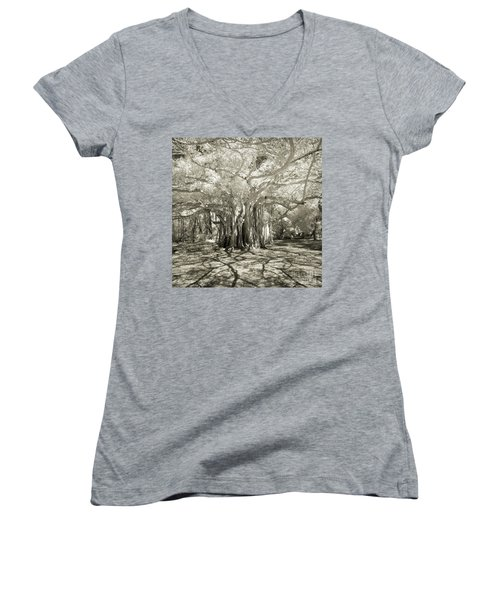 Banyan Strangler Fig Tree Women's V-Neck
