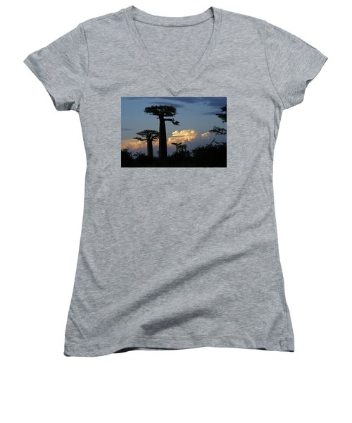 Baobabs And Storm Clouds Women's V-Neck (Athletic Fit)