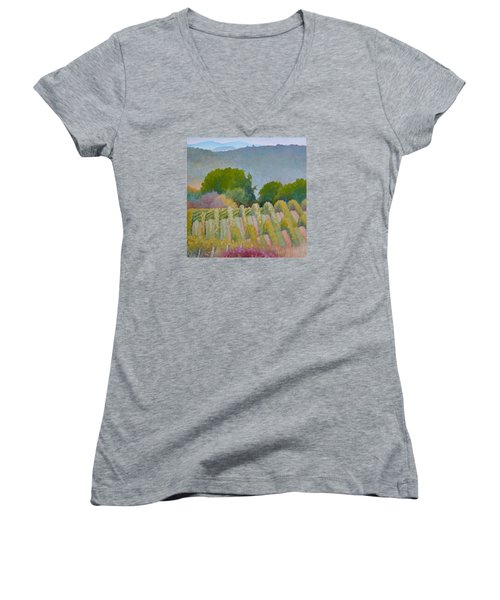 Barboursville Vineyards 1 Women's V-Neck T-Shirt