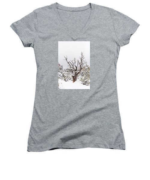 Bark And White Women's V-Neck T-Shirt (Junior Cut) by Laura Pratt