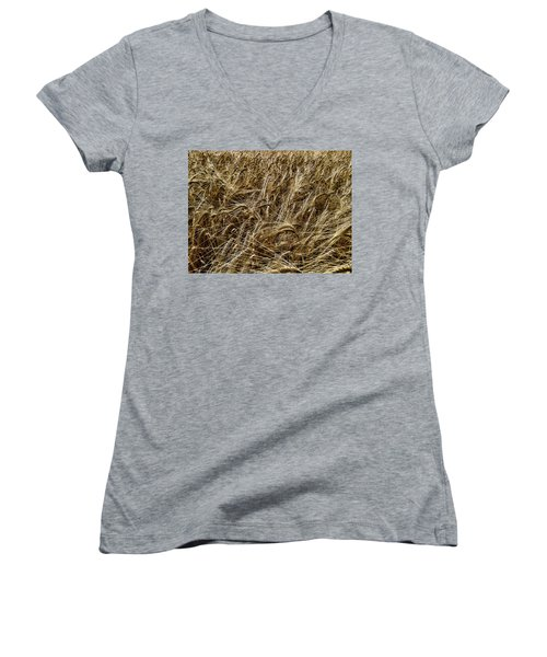 Women's V-Neck T-Shirt (Junior Cut) featuring the photograph Barley by RKAB Works