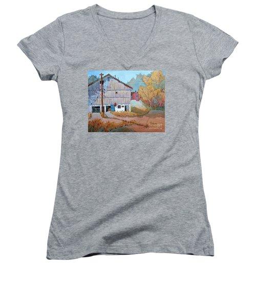 Barn Door Whimsy Women's V-Neck T-Shirt (Junior Cut) by Joyce Hicks