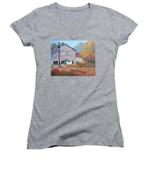 Barn Door Whimsy Women's V-Neck T-Shirt