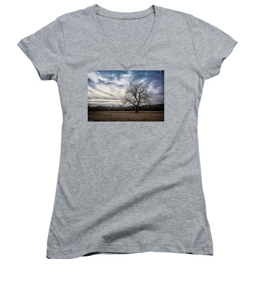 Baron Tree Of Winter Women's V-Neck