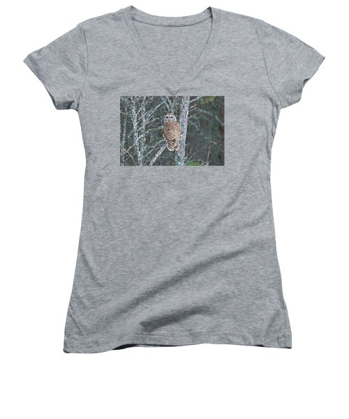 Barred Owl 1396 Women's V-Neck T-Shirt (Junior Cut) by Michael Peychich