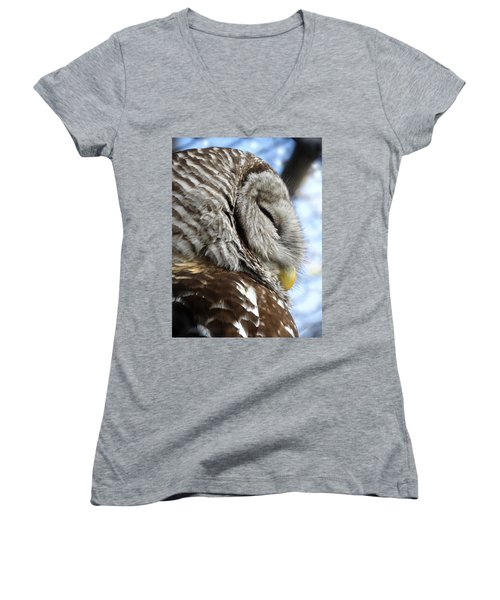 Barred Owl Beauty Women's V-Neck T-Shirt (Junior Cut) by Rebecca Overton