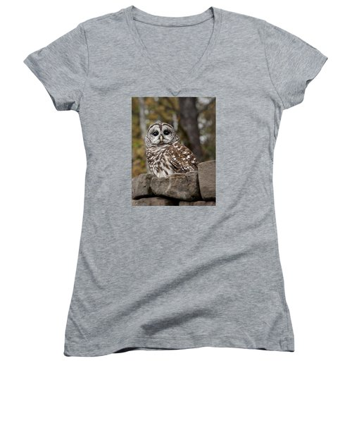 Women's V-Neck T-Shirt (Junior Cut) featuring the photograph Barred Owl by Tyson and Kathy Smith