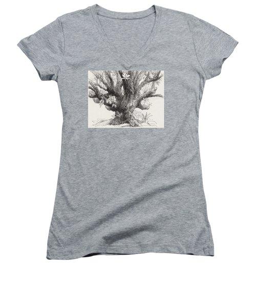 Barringtonia Tree Women's V-Neck