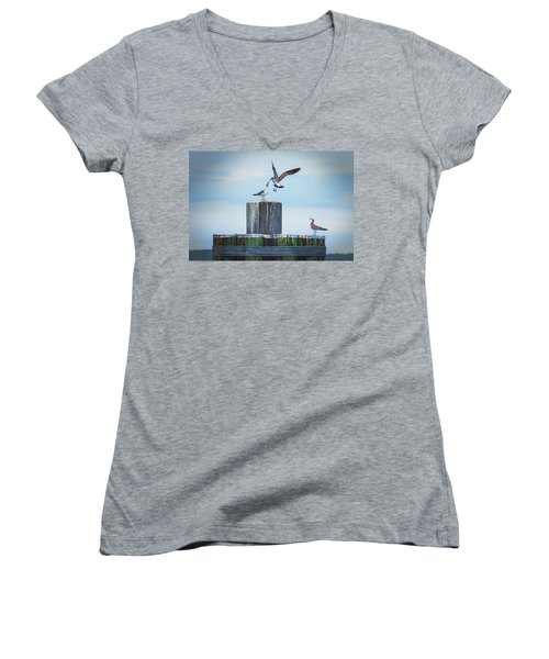 Battle Of The Gulls Women's V-Neck (Athletic Fit)