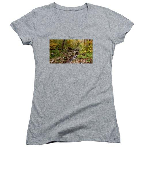 Baxter's Hollow II Women's V-Neck T-Shirt (Junior Cut) by Kimberly Mackowski