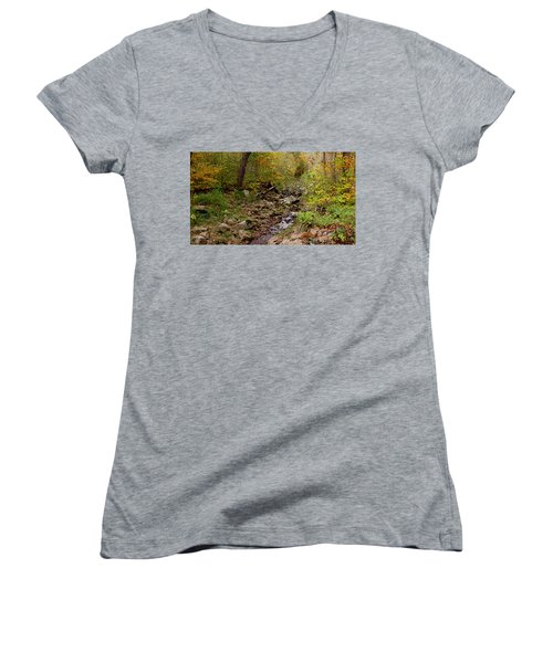 Baxter's Hollow II Women's V-Neck T-Shirt