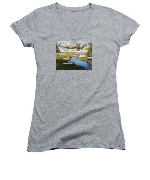 Bear Crossing Women's V-Neck T-Shirt (Junior Cut) by Ruanna Sion Shadd a'Dann'l Yoder