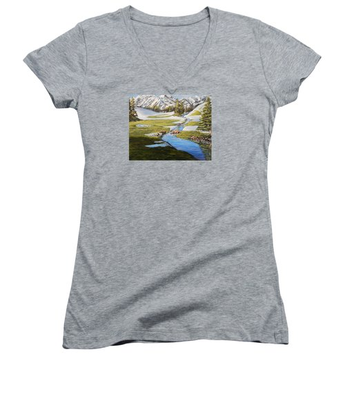 Spring In The Mountains Women's V-Neck (Athletic Fit)