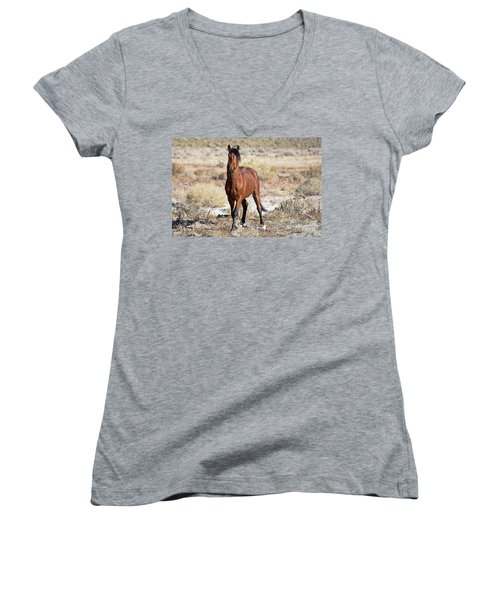 Beautiful Bay Women's V-Neck T-Shirt (Junior Cut) by Lula Adams