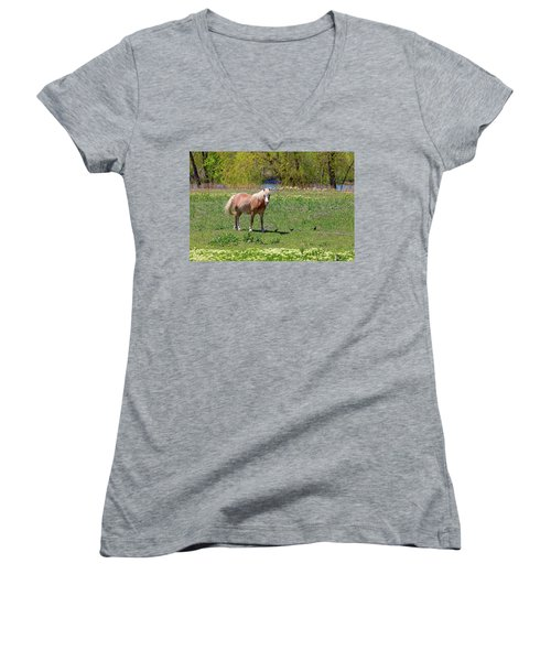 Beautiful Blond Horse And Four Little Birdies Women's V-Neck T-Shirt (Junior Cut) by James BO Insogna