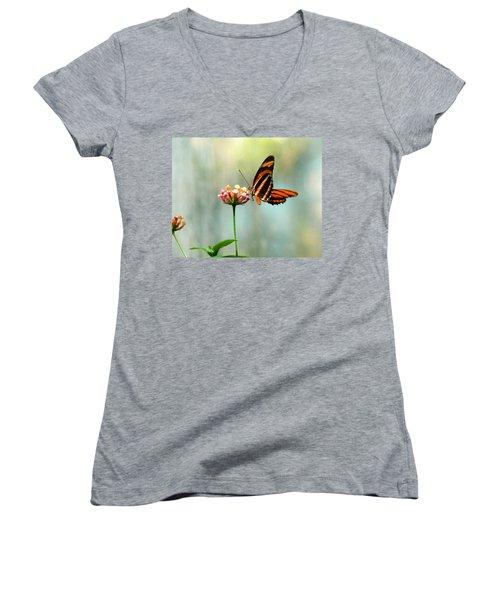 Beautiful Butterfly Women's V-Neck T-Shirt