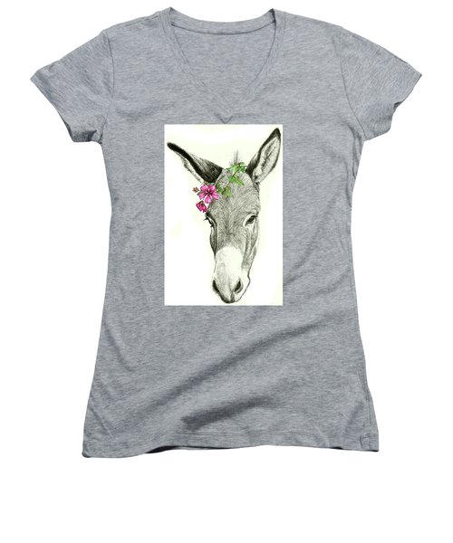 Beautiful Donkey Women's V-Neck T-Shirt
