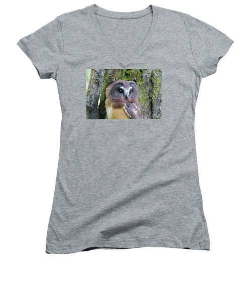Beautiful Eyes Of A Saw-whet Owl Chick Women's V-Neck
