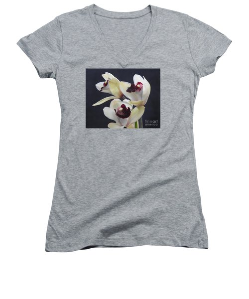 Beautiful Orchids Women's V-Neck T-Shirt