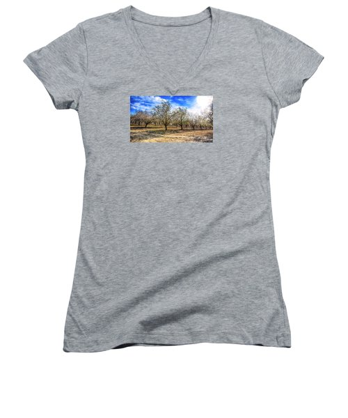 Beautiful Spring Garden  Women's V-Neck T-Shirt