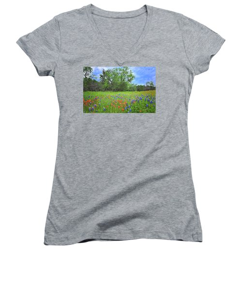 Beautiful Texas Spring Women's V-Neck T-Shirt