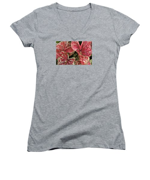 Women's V-Neck T-Shirt (Junior Cut) featuring the photograph Beauty In The Eye Of The Beholder by Susan Crossman Buscho