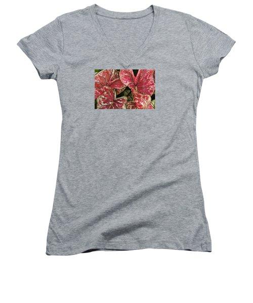 Beauty In The Eye Of The Beholder Women's V-Neck T-Shirt (Junior Cut) by Susan Crossman Buscho