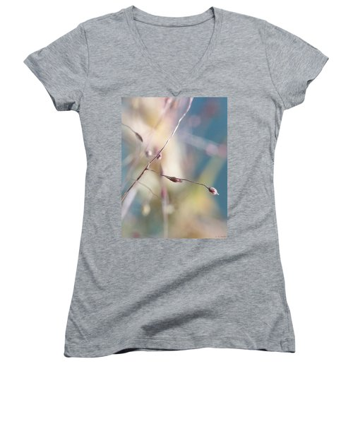 Beauty Women's V-Neck