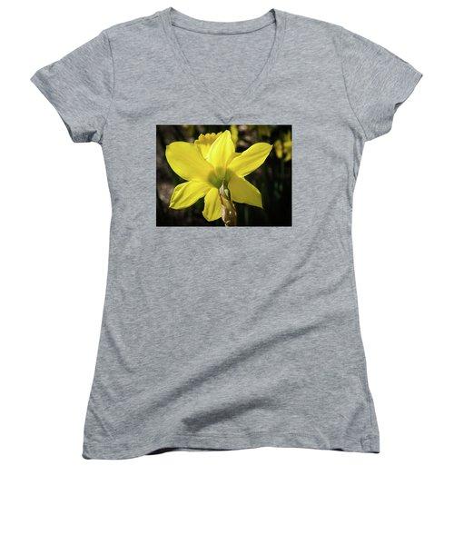 Beauty Of Springtime Women's V-Neck T-Shirt